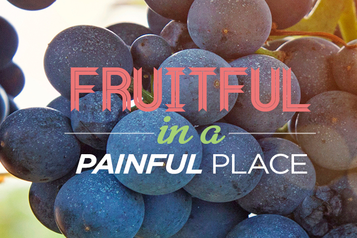fruitful_open